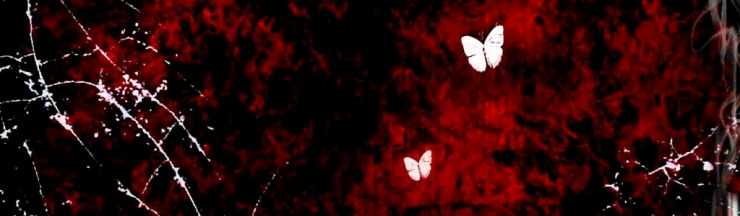 white-butterflies-artistic-abstract-header