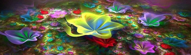 colorful-flowers-bouquet-fractal-abstract-header