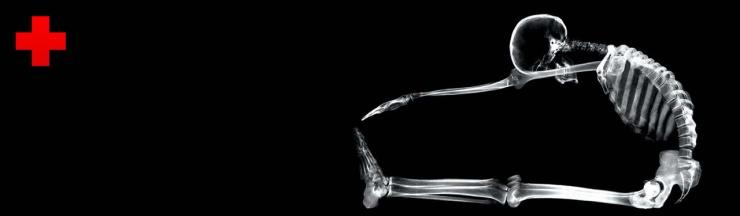 medical-gymnastic-skeleton-website-header
